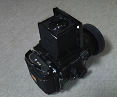 P1000016.jpg